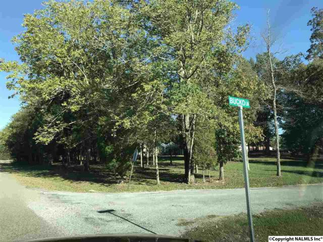 00 Longshore Drive, Leesburg, AL 35983 (MLS #1080664) :: Amanda Howard Sotheby's International Realty