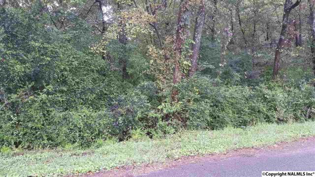 Lot 2 S Palmer Street, Guntersville, AL 35976 (MLS #1081307) :: Intero Real Estate Services Huntsville