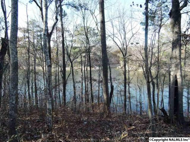 24 Rock Creek Penninsula, Arley, AL 35541 (MLS #1081736) :: RE/MAX Alliance