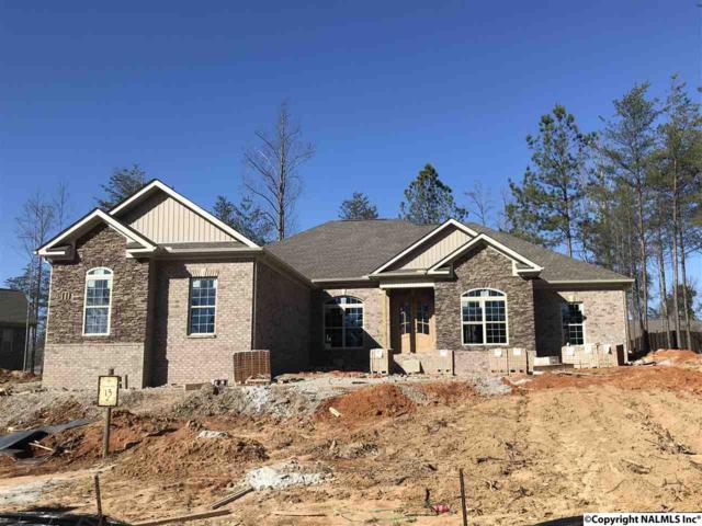 20 SE Natures Ridge Way, Huntsville, AL 35803 (MLS #1081835) :: Amanda Howard Real Estate™