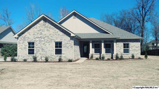 112 Twin Springs Drive, Harvest, AL 35749 (MLS #1081844) :: Amanda Howard Real Estate™