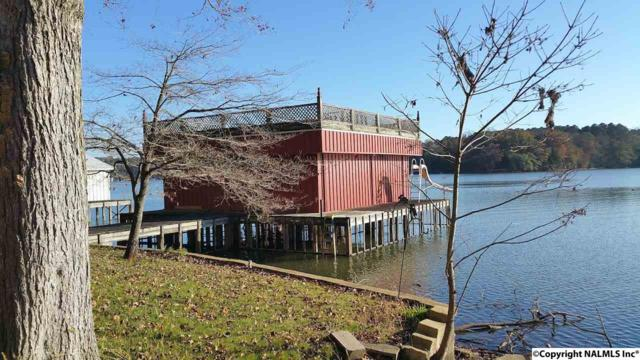1090 Riverfront Road, Rogersville, AL 35652 (MLS #1082314) :: Amanda Howard Real Estate™