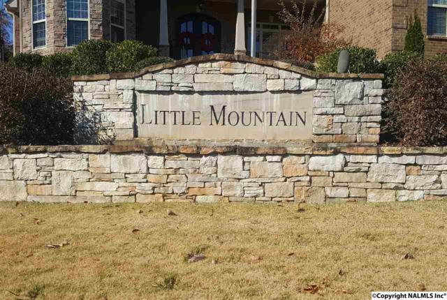 4623 Saddle Ridge Drive, Owens Cross Roads, AL 35763 (MLS #1082757) :: Amanda Howard Real Estate™