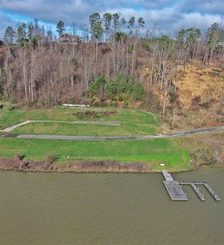 1441 Preston Island Circle, Scottsboro, AL 35769 (MLS #1082903) :: RE/MAX Alliance