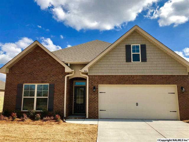 846 River Landing Blvd, Madison, AL 35756 (MLS #1083397) :: Amanda Howard Real Estate™