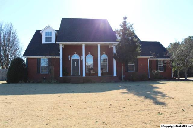 20088 Mary Ella Street, Tanner, AL 35671 (MLS #1083501) :: Intero Real Estate Services Huntsville