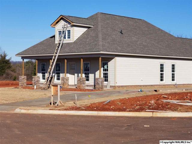129 Cormorant Landing, Madison, AL 35758 (MLS #1085161) :: Amanda Howard Real Estate™