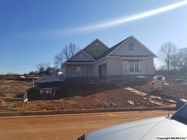 153 Cormorant Landing, Madison, AL 35758 (MLS #1085162) :: Amanda Howard Real Estate™