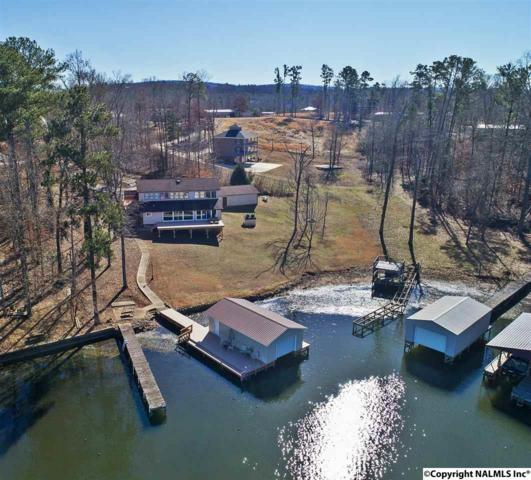 310 Onondaga Circle, Langston, AL 35755 (MLS #1085331) :: Capstone Realty