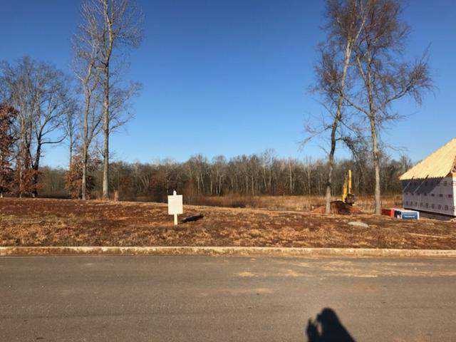 Lot 164 Keystone Drive, Meridianville, AL 35759 (MLS #1085732) :: The Pugh Group RE/MAX Alliance