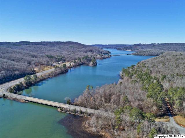 2 White Elephant Road, Grant, AL 35747 (MLS #1085808) :: Intero Real Estate Services Huntsville