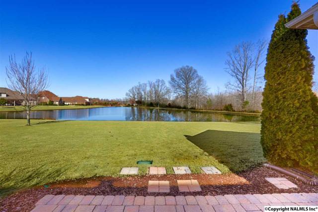 113 Wooded Brook Drive, Harvest, AL 35749 (MLS #1086065) :: Intero Real Estate Services Huntsville