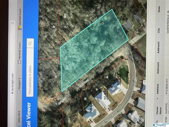 0 Deerman Street, Guntersville, AL 35976 (MLS #1086399) :: Southern Shade Realty