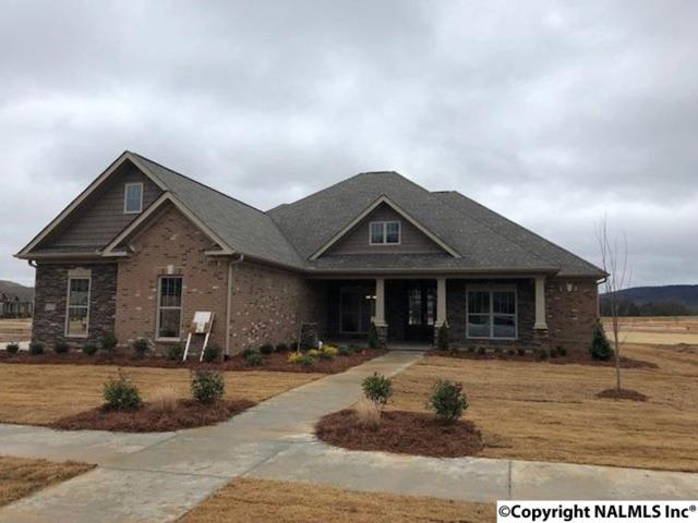 4530 River Park Blvd., Owens Cross Roads, AL 35763 (MLS #1086540) :: Intero Real Estate Services Huntsville