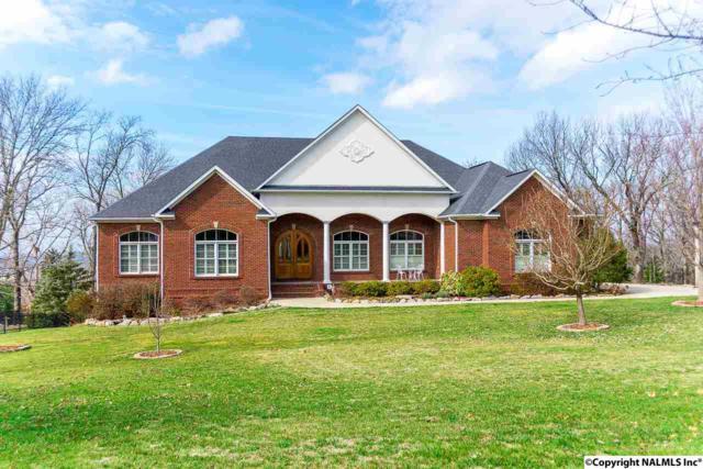 4015 Hawks Way, Huntsville, AL 35811 (MLS #1086639) :: Amanda Howard Real Estate™