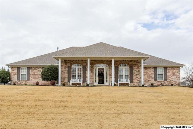 115 Hidden Creek Drive, Trinity, AL 35673 (MLS #1086812) :: Amanda Howard Real Estate™