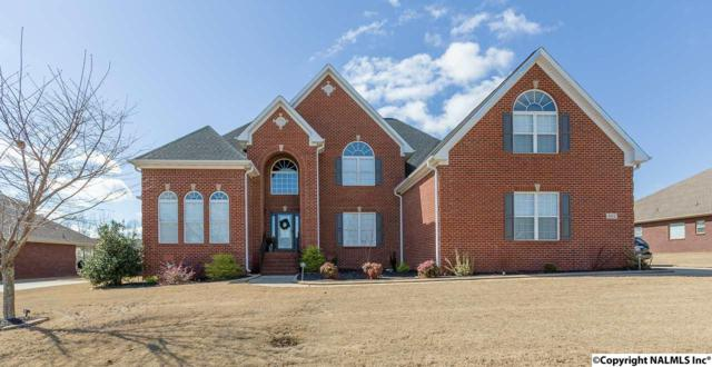 462 Nature's Way, Huntsville, AL 35824 (MLS #1087177) :: Intero Real Estate Services Huntsville