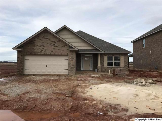 215 Iron Circle, Meridianville, AL 35759 (MLS #1087409) :: Amanda Howard Real Estate™