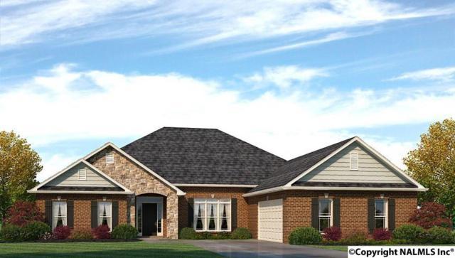 219 Hilltop Ridge Drive, Madison, AL 35756 (MLS #1087416) :: Amanda Howard Real Estate™