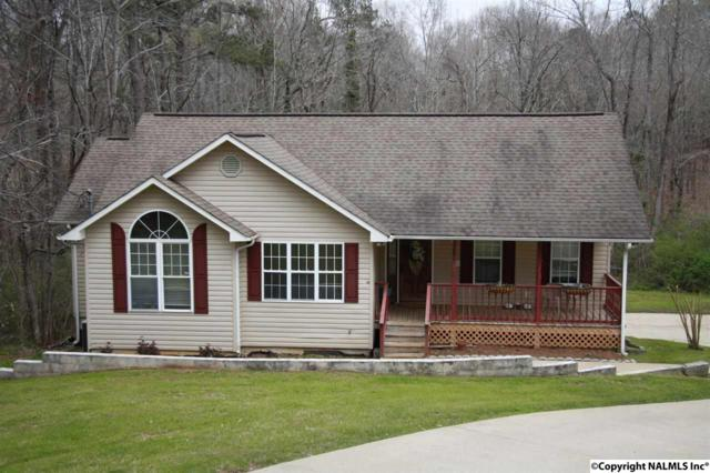 1011 Lackey Road, Southside, AL 35907 (MLS #1087463) :: Amanda Howard Real Estate™