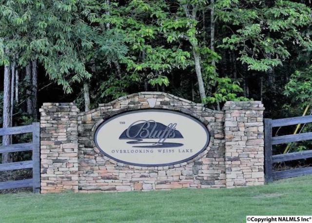 217 County Road 767, Cedar Bluff, AL 35959 (MLS #1088190) :: RE/MAX Alliance