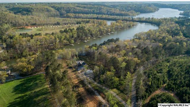 851 County Road 950, Crane Hill, AL 35053 (MLS #1088370) :: RE/MAX Alliance