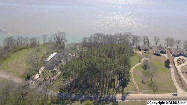 1150 County Road 33, Killen, AL 35645 (MLS #1088451) :: Amanda Howard Real Estate™