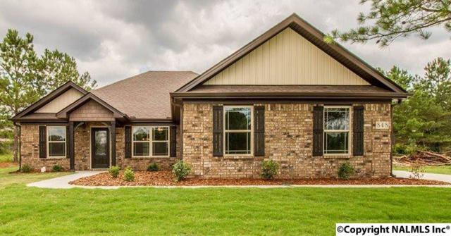 133 Clayton Mance Road, Meridianville, AL 35761 (MLS #1088570) :: Amanda Howard Real Estate™