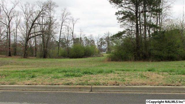 70 Peninsula Drive, Scottsboro, AL 35769 (MLS #1088658) :: RE/MAX Alliance