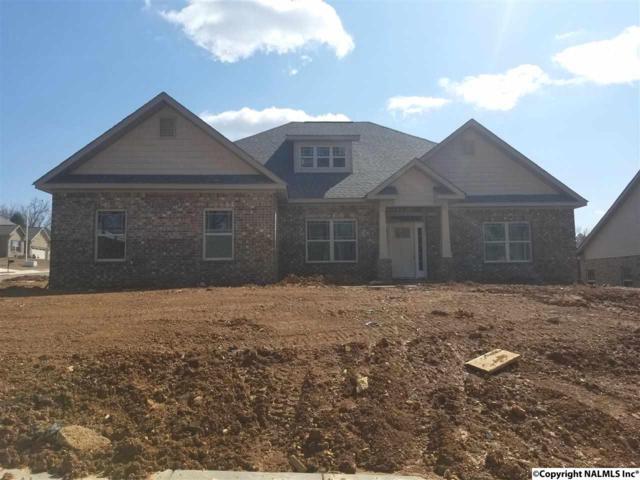 100 Fernhill Drive, Madison, AL 35757 (MLS #1088802) :: Amanda Howard Real Estate™