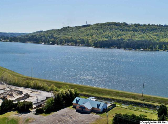 1525 Blount Avenue, Guntersville, AL 35976 (MLS #1090946) :: Intero Real Estate Services Huntsville