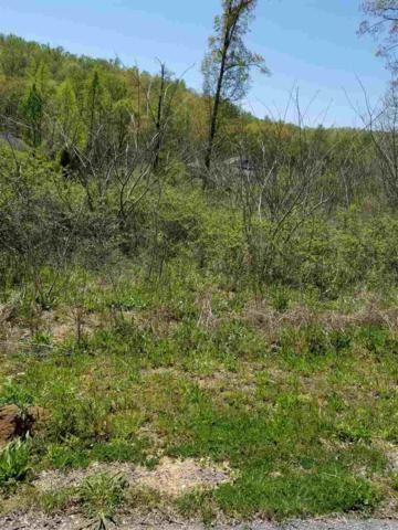 0 Eight Point Lane, Guntersville, AL 35976 (MLS #1091348) :: Intero Real Estate Services Huntsville