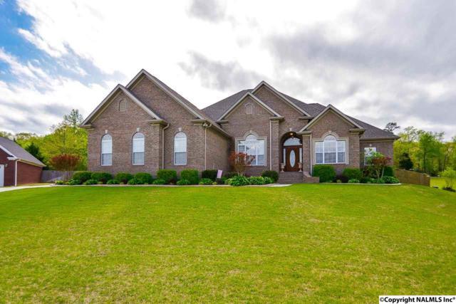 140 Braxton Court, Decatur, AL 35603 (MLS #1091801) :: RE/MAX Alliance