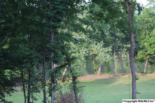 564 Hardie Lane, Hokes Bluff, AL 35903 (MLS #1092763) :: The Pugh Group RE/MAX Alliance