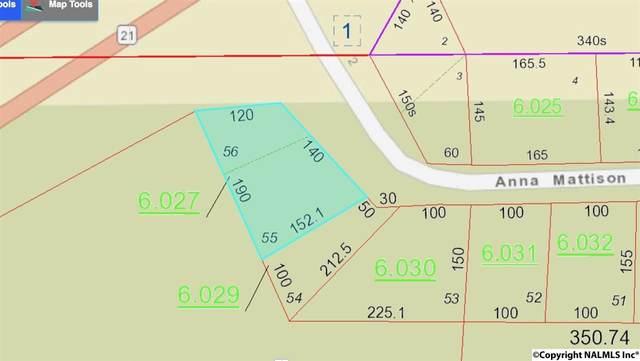 Anna Mattison Road 55-56, Oxford, AL 36203 (MLS #1093183) :: Green Real Estate