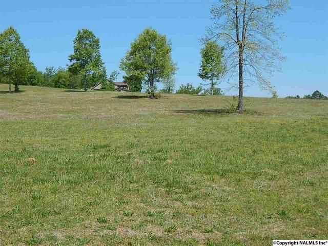 166 Legendary Drive, Guntersville, AL 35976 (MLS #1095437) :: Rebecca Lowrey Group