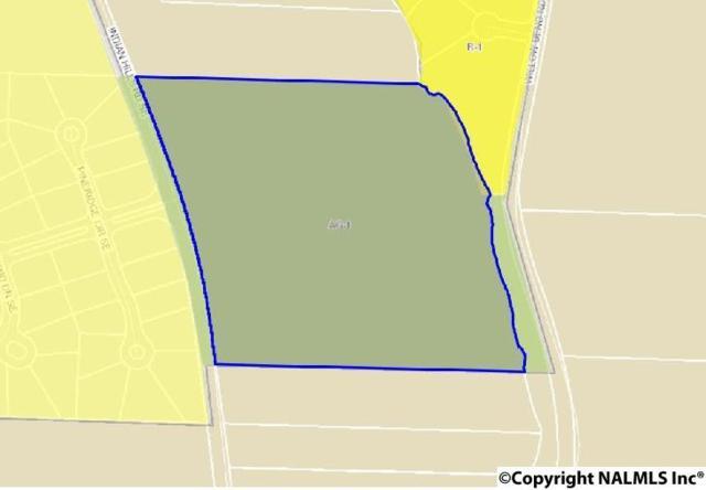 Indian Hills Road, Decatur, AL 35603 (MLS #1096370) :: Legend Realty