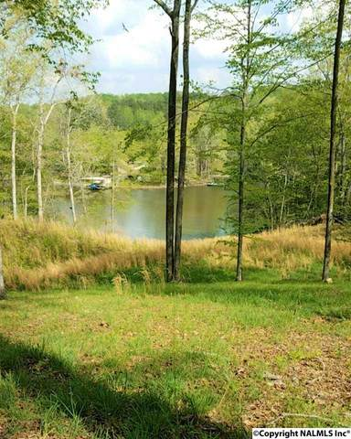 1033 County Road 404, Killen, AL 35645 (MLS #1096627) :: LocAL Realty