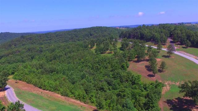 278 County Road 767, Cedar Bluff, AL 35959 (MLS #1097016) :: Amanda Howard Sotheby's International Realty
