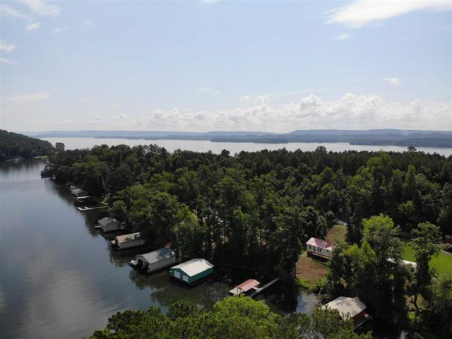 415 Pine Island Point, Scottsboro, AL 35769 (MLS #1097328) :: Legend Realty