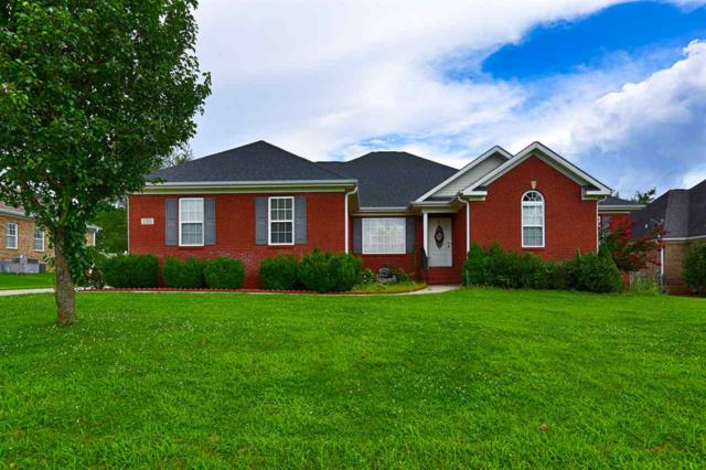135 Old Camp Road, Meridianville, AL 35759 (MLS #1097510) :: The Pugh Group RE/MAX Alliance