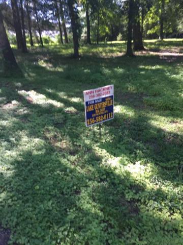 Riverbend Estates Road, Guntersville, AL 35976 (MLS #1097943) :: Amanda Howard Sotheby's International Realty