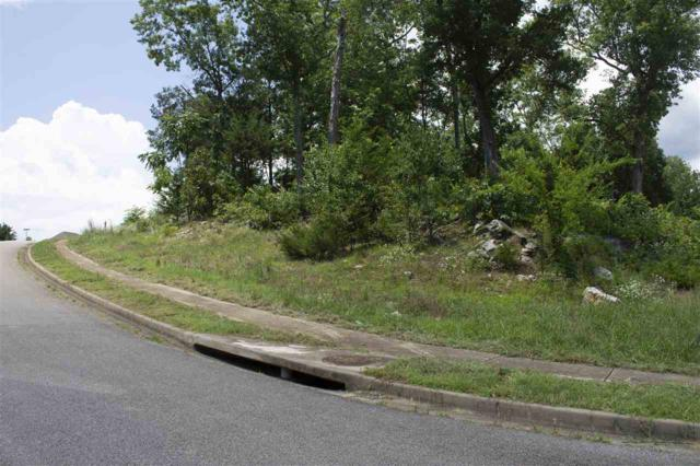 0 Saddle Ridge Drive, Owens Cross Roads, AL 35763 (MLS #1098009) :: Amanda Howard Sotheby's International Realty