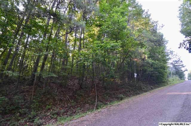 40 Becky Drive, Gadsden, AL 35901 (MLS #1099730) :: Southern Shade Realty