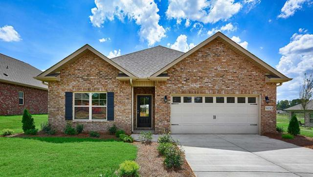 9030 Segers Trail Loop, Madison, AL 35756 (MLS #1100319) :: Eric Cady Real Estate