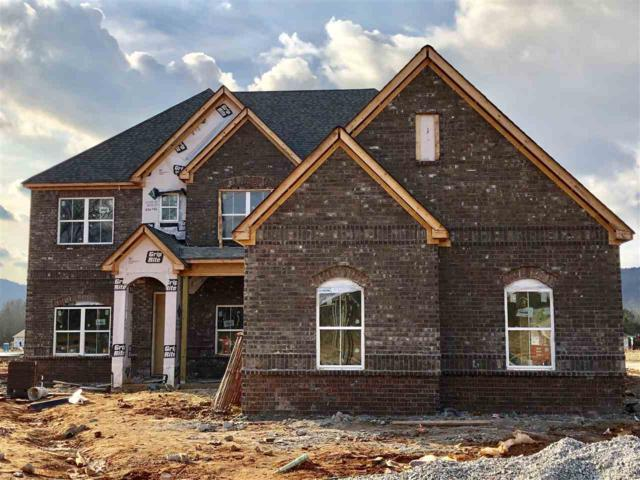 3036 Ginn Point Road, Owens Cross Roads, AL 35763 (MLS #1101554) :: Eric Cady Real Estate