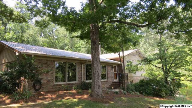3461 Creek Circle, Guntersville, AL 35976 (MLS #1101953) :: Capstone Realty