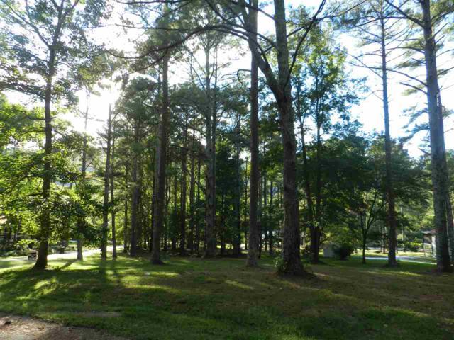3 Mills Circle, Brownsboro, AL 35741 (MLS #1102493) :: Capstone Realty
