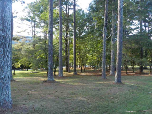 7 Mills Circle, Brownsboro, AL 35741 (MLS #1102500) :: Capstone Realty
