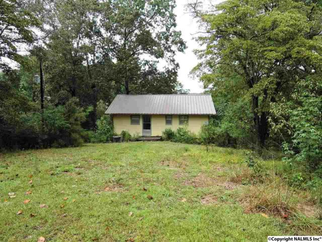 244 County Road 179, Crane Hill, AL 35053 (MLS #1102891) :: Amanda Howard Sotheby's International Realty